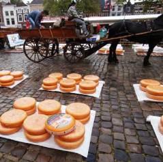 Gouda: Markt Square –