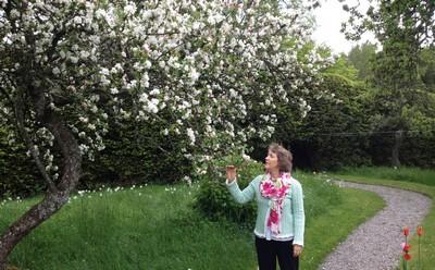 Ellen's garden ed