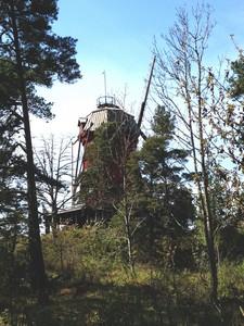 windmill ed
