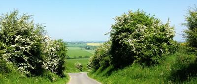 5 Wiltshire landscape ed