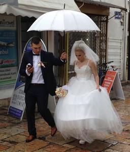 56 wedding a ed