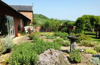 7 herb garden ed