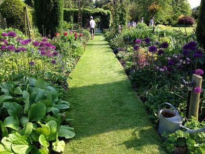 8 floral walkways