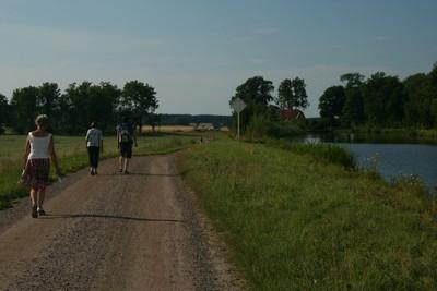 81 walking at Hajstorp