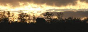 african-sunset-p-ed