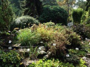 36a-bot-gardens