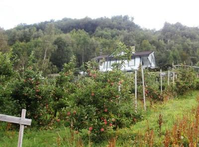 Panoramic Norway – Spectacular Highlights | Joie de Vivre Magazine